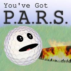 PARS: Periodic Agent Review Show