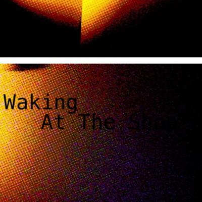 Cover art for Waking at the Shop