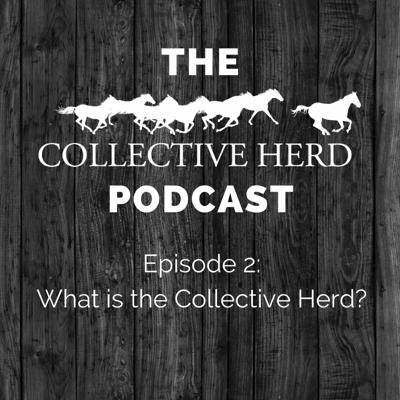 Cover art for Episode 2 - What is the Collective Herd anyway?