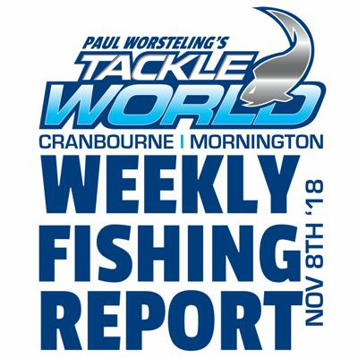 Cover art for Weekly Fishing Report November 8th 2018 - Tackle World Cranbourne & Mornington