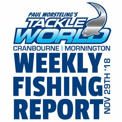 Cover art for Weekly Fishing Report November 29th 2018 - Tackle World Cranbourne & Mornington