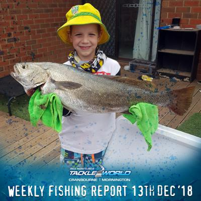 Cover art for Weekly Fishing Report December 13th 2018 - Tackle World Cranbourne & Mornington