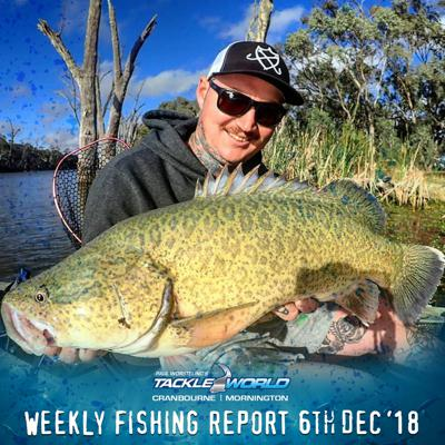 Cover art for Weekly Fishing Report December 6th 2018 - Tackle World Cranbourne & Mornington