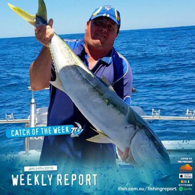 Cover art for Weekly Fishing Report January 24th 2019 - Tackle World Cranbourne & Mornington