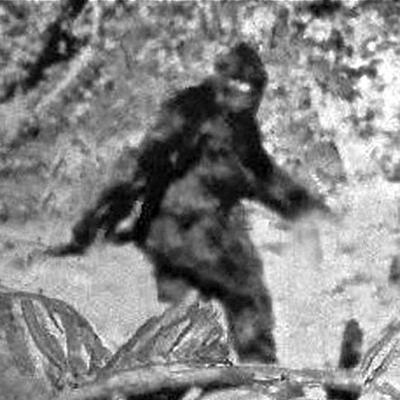 Cover art for Blurry Creatures ep 1: Bigfoot The Gateway Drug