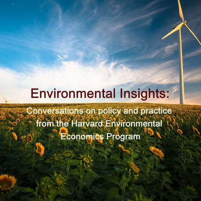 Environmental Insights: Conversations on policy and practice from the Harvard Environmental Economics Program.    PHOTO: by Gustavo Quepón on Unsplash