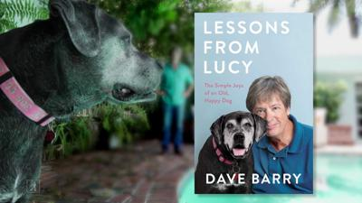 Cover art for Lessons From Lucy