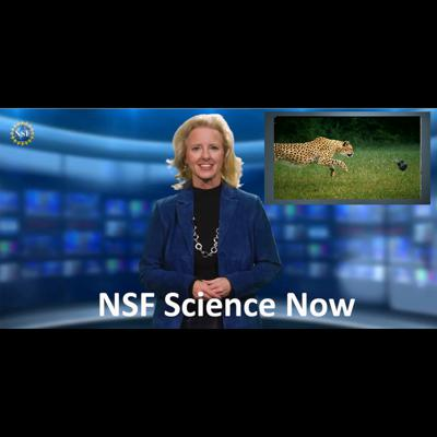 NSF Science Now
