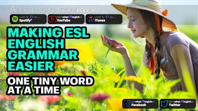 Cover art for Making Esl English Grammar Easier One Tiny Word At A Time Ep 342