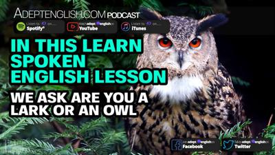 Cover art for In This Learn Spoken English Lesson We Ask Are You A Lark Or An Owl Ep 335