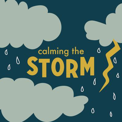 Cover art for Calming the Storm