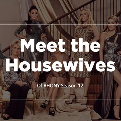 RHONY: Meet the Housewives