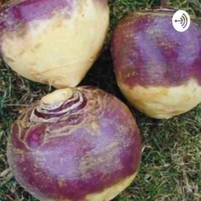 Cover art for Lars the Rutabaga