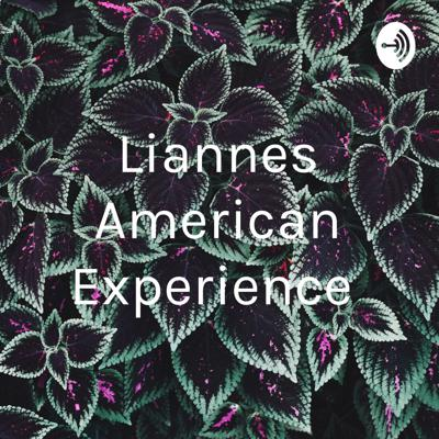 Liannes American Experience