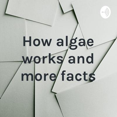 How algae works and more facts
