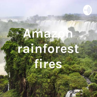 Our podcast is about the amazon rainforest fires.