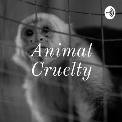 What is Animal Cruelty? How do we prevent it from happening?