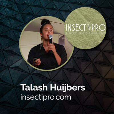 Cover art for VOX#12: InsectiPro, Talash Huijbers, CEO (April 30, 2020)