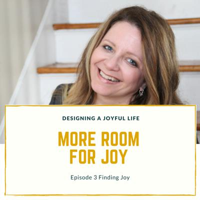 Cover art for Finding Joy