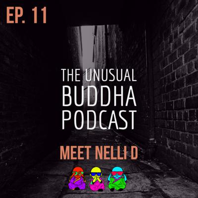 Cover art for Meet Nelli D
