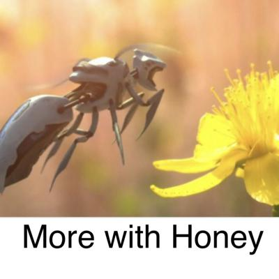 Cover art for More with Honey