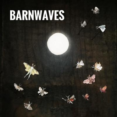 BarnWaves is a digital variety show with new theater, music, comedy, and performance created by Andrew Simon, Maki Borden, and Wesley Zurick.  If you have a song, a scene, or an idea that you would like to submit to BarnWaves, email andrew@barnarts.me.  Support this podcast: https://anchor.fm/barnwaves/support