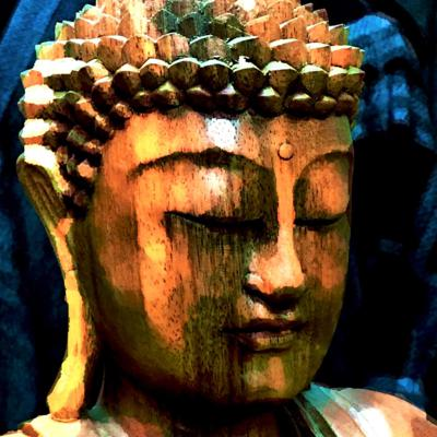 For those wanting to hear the root teachings of the Buddha, this podcast features readings of sutras from the Middle Length Discourses and other sources. The sutras included here are especially for those who want to understand the workings of their own mind, how to navigate feelings and emotions, and structure their thoughts in more positive ways.