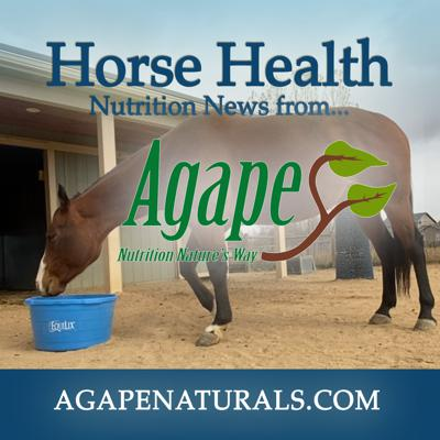 Horse Nutrition News with Agape