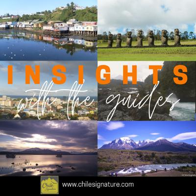 Interviews with Local Guides to get insights of the places where they live and work in Chile.