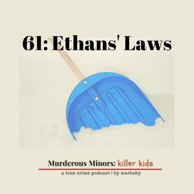 Cover art for 61: Ethans' Laws (Damian Hauschultz; Ethan Song)