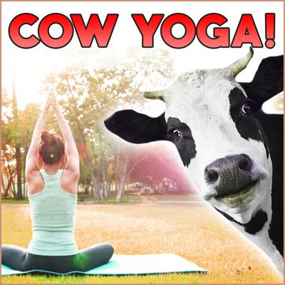 Cover art for Cow Yoga!