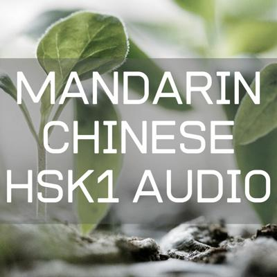 Cover art for Mandarin Chinese HSK1 Lesson 2.1 : What is your name?