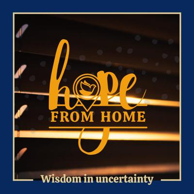 Cover art for Hope from Home: Job #2
