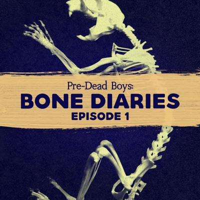 Cover art for 1: Bone Diaries ep. 1