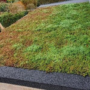 Cover art for 4: Designing and installing a Green Roof