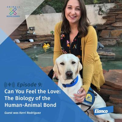 Cover art for Can You Feel the Love: The Biology of the Human-Animal Bond