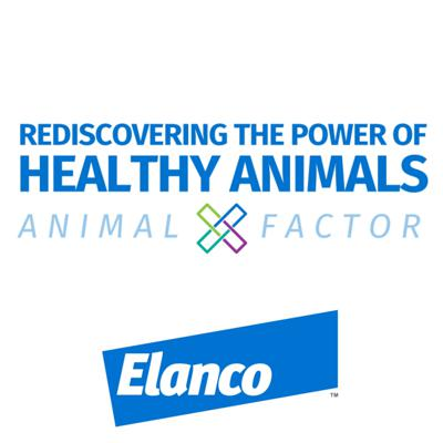 Rediscovering the Power of Healthy Animals Podcast Join us on our journey as we discuss how healthy animals can unlock solutions to some of our greatest global issues like malnourishment, anxiety and resource scarcity. Elanco's Michelle Calvo-Lorenzo will speak to industry experts to help us uncover why animals are the x-factor.