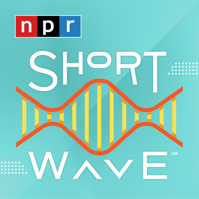 New discoveries, everyday mysteries, and the science behind the headlines — all in about 10 minutes, every weekday. It's science for everyone, using a lot of creativity and a little humor. Join host Maddie Sofia for science on a different wavelength.
