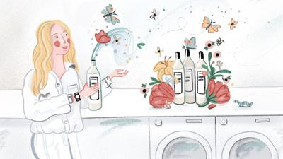 Cover art for The Laundress: Lindsey Boyd