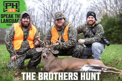Cover art for The Brothers Hunt
