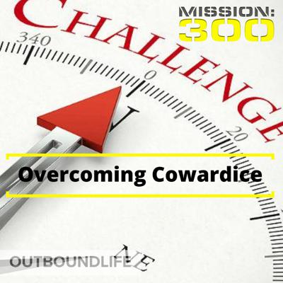 Cover art for Episode 29 - Overcoming Cowardice - Rising above the blame game