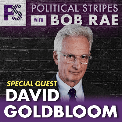 Cover art for Political Stripes with Bob Rae - Episode 39 - Covid and Mental Health with David Goldbloom