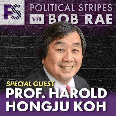 Cover art for Political Stripes with Bob Rae - Episode 40 - Harold Koh