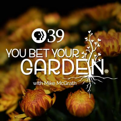 """""""You Bet Your Garden"""" touted as an hour of"""