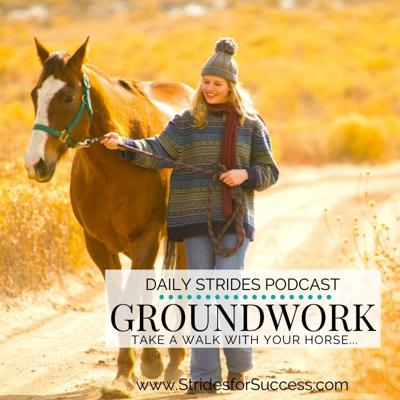 Cover art for Groundwork; Take a Walk with Your Horse