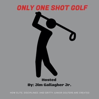 Join 5 time PGA Tour winner, 1993 Ryder Cup team, and 1994 Presidents cup team member, Jim Gallagher Jr. along with Top 100 golf instructor, V.J. Trolio as they share their incite on how elite, competitive, gritty, healthy, golfers are made. We will hear  from some of the best instructors, coaches and players in the game.