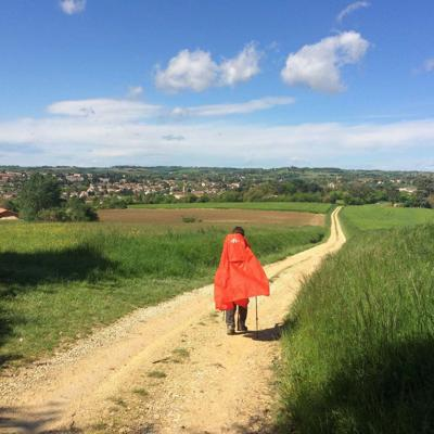 Cover art for Walking the French Chemin de Compostelle, Episode 296