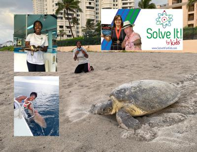 Cover art for How Can We Help Protect Sea Turtle Nests?