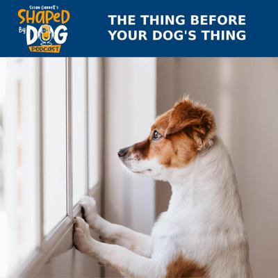 Cover art for The Thing Before Your Dog's Thing