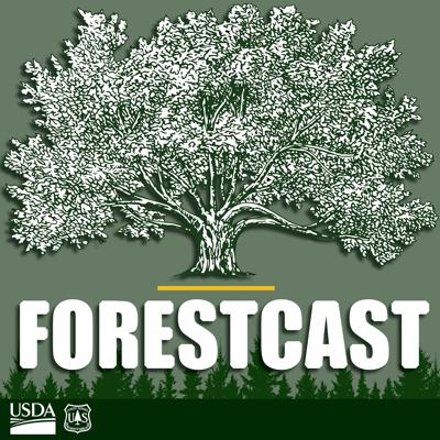 """Cover art for Welcome to """"Forestcast"""""""